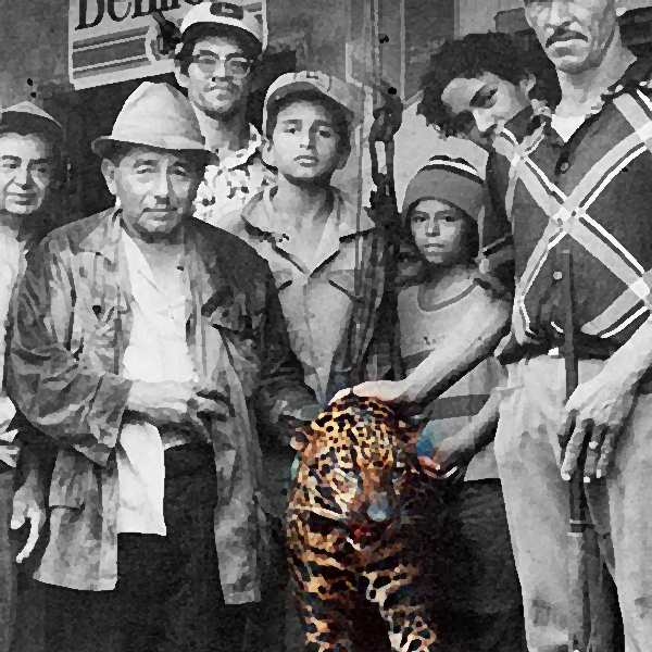 El último Tigre de Volcán