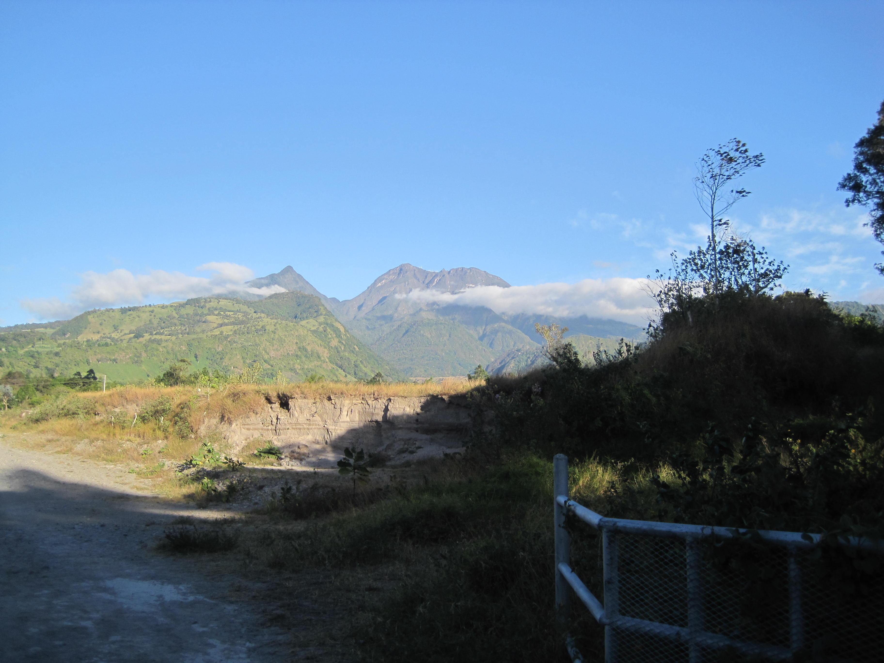 Camino de Pinos en Paso Ancho